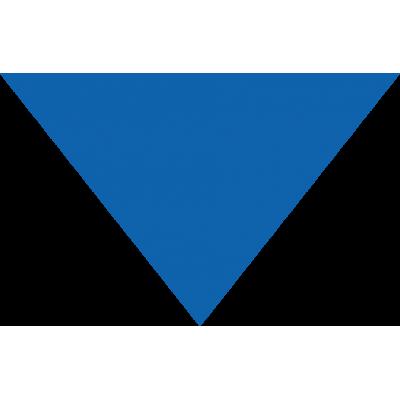 Bandana Personalizada Azul Royal