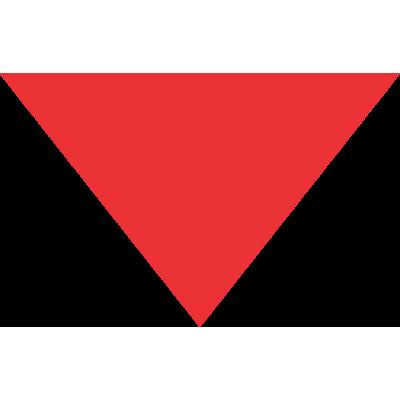 Bandana Personalizada Vermelha